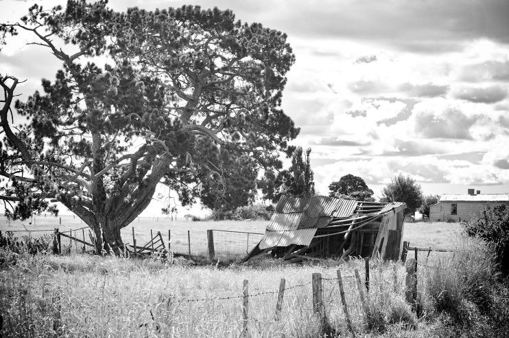 Landscape australian outback